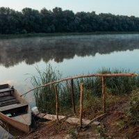 Утро на реке Дон :: Александр Карпенко