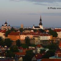 Fotostuudio Akolit,Tallinn :: Аркадий  Баранов Arkadi Baranov