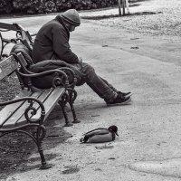 Одиночество вдвоем :: Наталия Крыжановская
