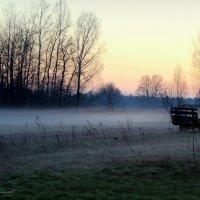 Весенний туман :: Михаил Власов