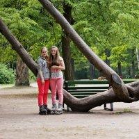 В парке. :: Алексей Чебыкин