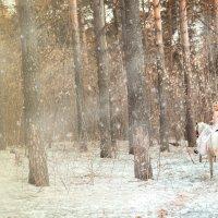 Снежный апрель :: Ольга Шеломенцева