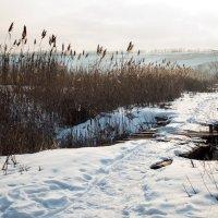 Зимний пейзаж :: Александр Карпенко