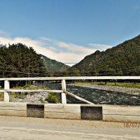 Река Чемал. 18.07.2013 год :: Юлия Пашнова