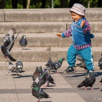 Малыш и голуби :: Владимир Бриг