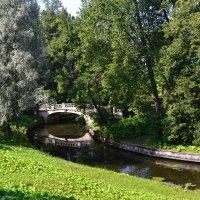 мостик в парке :: Igor Osh