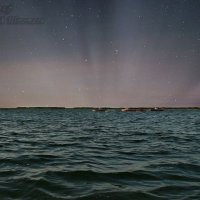 озеро Чаны :: Елена Баландина