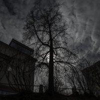 Иллюстрация к Достоевскому :: игорь щелкалин
