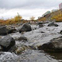 Тундра в Норильске, маленькая горная речка :: Анастасия Веременко