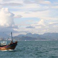 Вьетнам :: Наталья Терентьева
