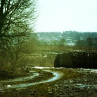 Цветная зима :: Nikita Sychev