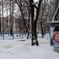 не проходите мимо! :: Вячеслав Михеев