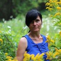 лесная история.. :: Дарья Коротышева