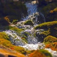 Горная речка :: Dave Ashley