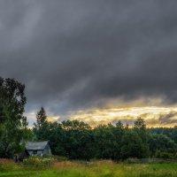 Одно летнее утро. :: Andrei Dolzhenko