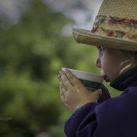 Вечерний чай :: Александра Гусева