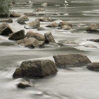 Этюд о воде 1 :: Виталий