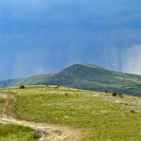 Летний дождик. :: Геннадий Валеев