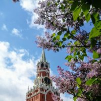 Весна в Кремле :: Daria Zhdanova