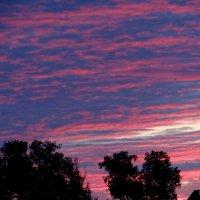 Закатное небо :: Антонина Гугаева