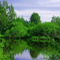 Боярское озеро. :: Ирина