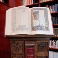 Галилейский Дом.  Библиотека. :: Надя Кушнир