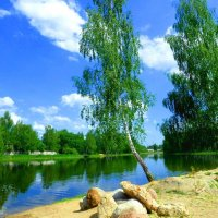Май на озере Ключевом. :: Александр Атаулин