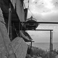 Ждут свое море :: M Marikfoto