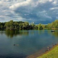Летний пейзаж в конце июня... :: Sergey Gordoff