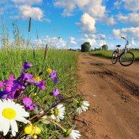 Я буду долго гнать велосипед, в густых лугах его остановлю... :: Павлова Татьяна Павлова