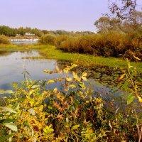 на озере :: Александр Прокудин