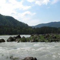 река Катунь :: Наталья Кочетова