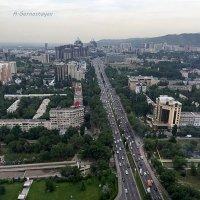 Проспект Аль-Фараби в Алматы. :: Anna Gornostayeva