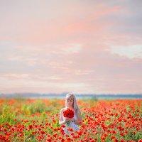 Маковое поле :: Александра Домнина