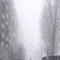Туман и снег :: Кирилл Яшин