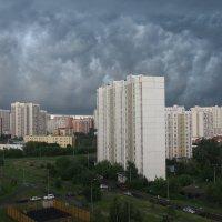 Перед грозой :: Сергей Михальченко