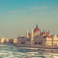 Парламент :: алексей афанасьев