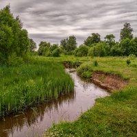 Малые реки России :: Андрей Дворников