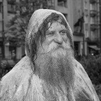 Лето Деда Мороза :: Виктор (victor-afinsky)