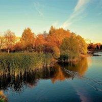 Золотой закат в Парке Авиаторов... :: Sergey Gordoff