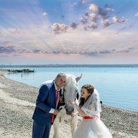 Любовь и лошадь :: Дмитрий Конев