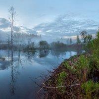 Затопленный ручей :: Фёдор. Лашков