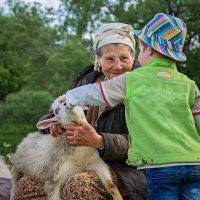 Встреча с козочками на речке :: Наталья Путилина