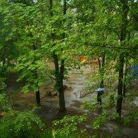 Дождливая погода. :: Олег Пучков