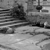спящие в городе :: Наталья Сазонова