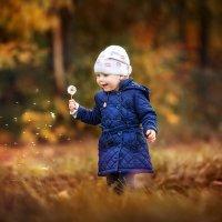 Маленькие осенние радости... :: Роман Юленков