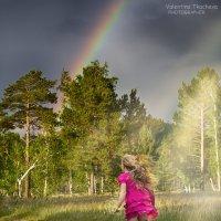 В погоне за радугой :: Валентина Ткачёва