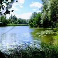 Райский уголок :: Наталия Каминская