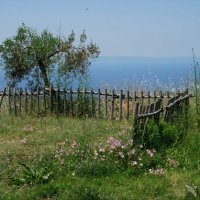 Забор и море :: IURII