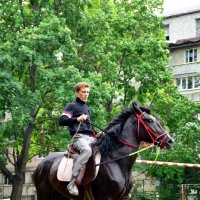 Пасутся кони возле дома :: донченко александр